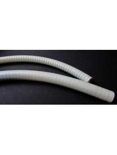 Wąż - Przewód ssaka zewnętrzny